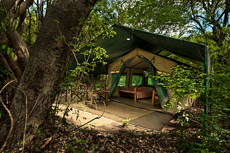Tent - Accommodation at Selous River Camp